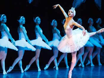 On Sale Now: Swan Lake